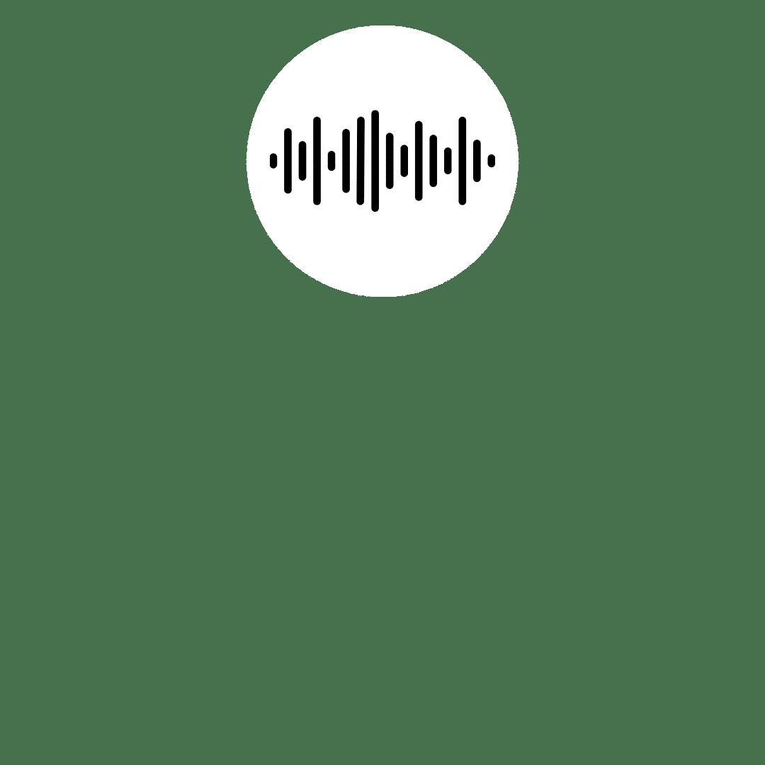 L'importance de l'audio dans votre salle visio